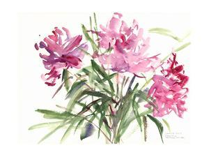 Peonies, 2004 by Claudia Hutchins-Puechavy