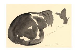 Sleeping cat, 1984 by Claudia Hutchins-Puechavy