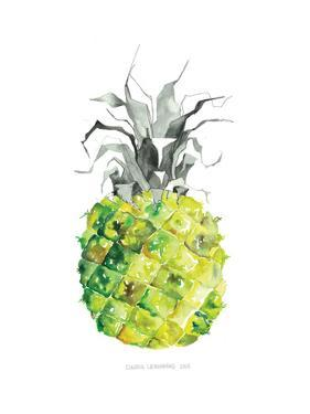 Pineapple_yellow by Claudia Liebenberg
