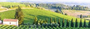 Chianti, Tuscany by Claudiogiovanni