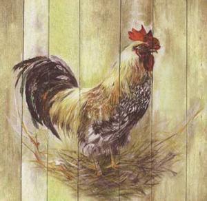 Coq by Clauva