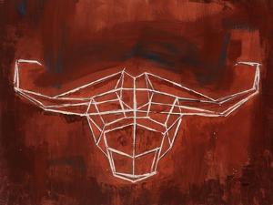 El Toro by Clayton Rabo