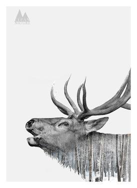Deer by Clean Nature