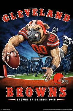 CLEVELAND BROWNS - END ZONE 17