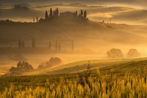 Europe, Italy, Belvedere farmhouse at dawn, province of Siena, Tuscany. by ClickAlps