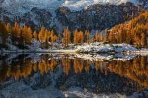 Europe, Italy, refclections in Adamello - Brenta Park, Trentino Alto Adige. by ClickAlps
