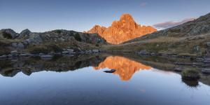 Europe, Italy, Trentino, Rolle pass. Cimon della Pala reflected in the lakes of Cavallazza at sunse by ClickAlps