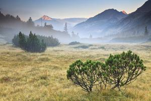 Fumo Valley, Adamello-Brenta Natural Park, Trentino Alto Adige, Italy. Sunrise with Fog In by ClickAlps