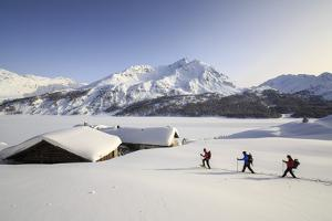 Hikers on Snowshoes, Spluga, Maloja Pass. Engadine. Switzerland. Europe by ClickAlps
