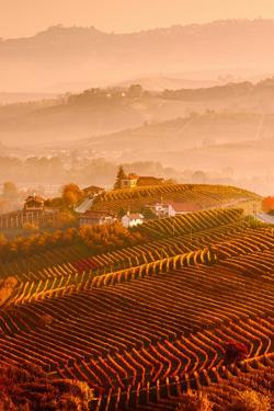 Italy, Piedmont, Cuneo District, Langhe - Autumnal Sunrise by ClickAlps