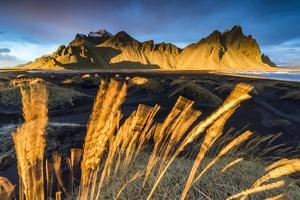 Landscape at sunset. Stokksnes, Eastern Iceland, Europe by ClickAlps