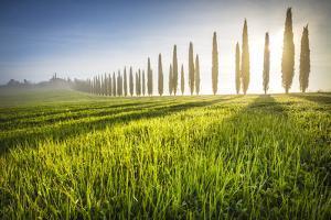 Poggio Covili, Castiglione d'Orcia, Val d'Orcia, Tuscany, Italy by ClickAlps