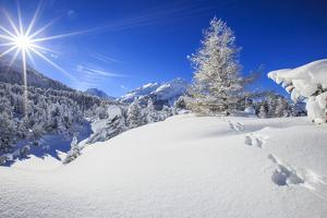 Rays of winter sun illuminate the snowy landscape around Maloja Canton of Engadine Switzerland Euro by ClickAlps