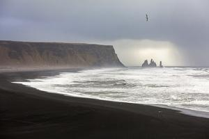 Rock formations at the beach of Reynisfjara, Vik, Sudurland, Iceland, Europe by ClickAlps