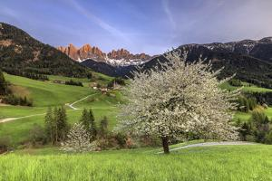 St. Magdalena and the Odle Group. Funes Valley South Tyrol Dolomites Italy Europe by ClickAlps
