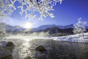 Sun Illuminates Tree Branches Covered with Frost Along the River Inn. Sils by ClickAlps