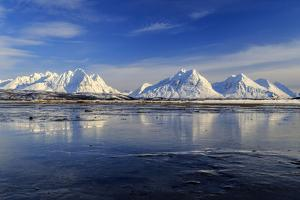The blue sky and snow capped mountains are reflected in the frozen water  Breivikeidet Lyngen Alps  by ClickAlps