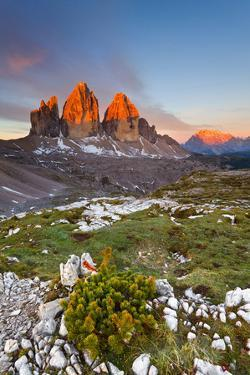 Three peaks of Lavaredo, Dolomites, Italy. The early morning colors the three peaks, in summertime. by ClickAlps