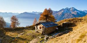 Typical mountain chalet in Stelvio National Park. Sondrio district, Lombardy, Italy. by ClickAlps