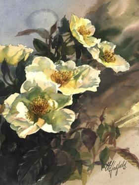 Hadfield Roses I by Clif Hadfield