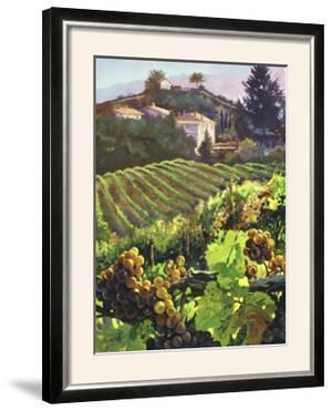 Siena Harvest by Clif Hadfield