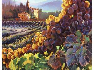 Tuscany Harvest by Clif Hadfield