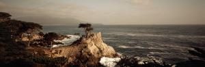 Cliff along the Sea, Seven Mile Beach, California, USA