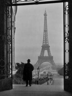 Man Looking Out on the Eiffel Tower by Clifton R. Adams