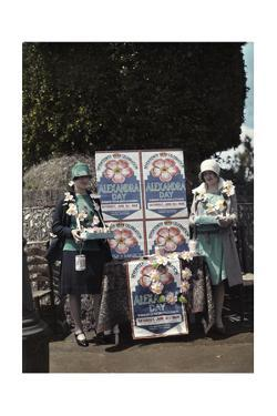 Women Selling Queen Alexandra Roses for Charity by Clifton R. Adams