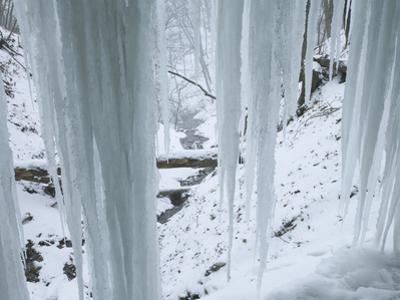 Icicles in Bridal Veil Falls, Pikes Peak State Park, Iowa, USA