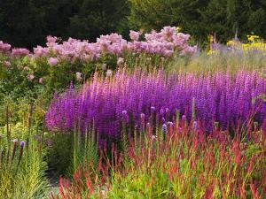 Trentham Gardens by Clive Nichols