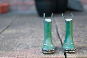 Green Wellies by Clive Nolan
