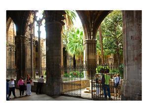 Cloister of Catedral La Seu in the Barri Gotic, Barcelona, Catalonia, Spain