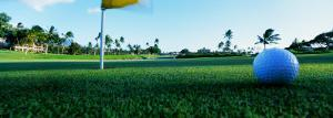 Close Up Golf Ball and Hole, Hawaii, USA