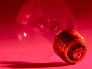 Close-up of Fragile Light Bulb