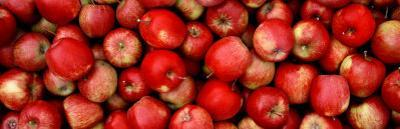 Close-up of Red Apples