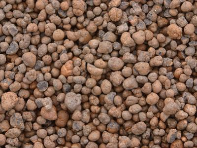 Close-up of Small Brown and Gray Pebbles