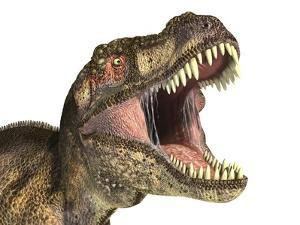 Close-Up of Tyrannosaurus Rex Dinosaur with Mouth Open
