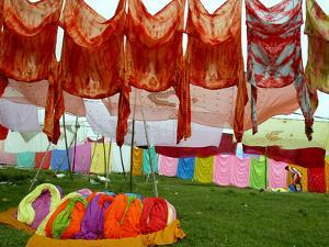 Clothes Hang on a Line to Dry after Being Washed on the Banks of the River Gomti