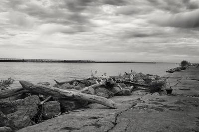 https://imgc.allpostersimages.com/img/posters/cloudscape-over-pier-with-driftwood-b-w_u-L-Q1CQJWE0.jpg?artPerspective=n