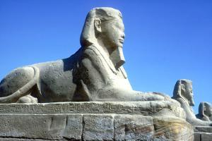 A Sphinx from the Avenue of Sphinxes, Temple Sacred to Amun Mut and Khons, Luxor, Egypt, C370 Bc by CM Dixon
