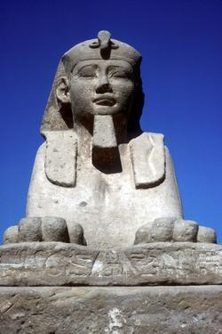 Frontal View of Sphinx from the Avenue of Sphinxes, Temple Sacred to Amun Mut and Khons, Luxor, Egy by CM Dixon