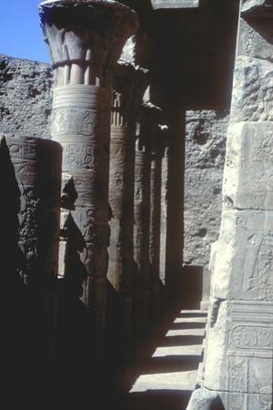 Lotus Capitals, Temple of Horus, Edfu, Egypt, Ptolemaic Period, C251 Bc-C246 Bc by CM Dixon
