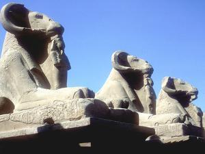 Ram-Headed Sphinxes, Temple of Amun, Karnak, Egypt by CM Dixon