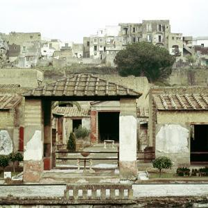 The House of the Stags, Herculaneum, Italy by CM Dixon