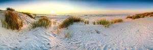 Coast Dunes Beach Sea, Panorama