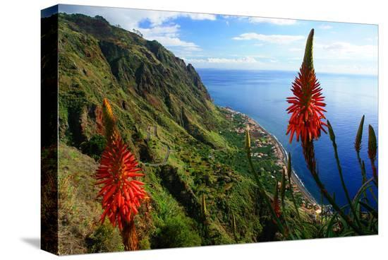 Coastal landscape and village of Paul do Mar, Madeira Island, Portugal--Stretched Canvas Print