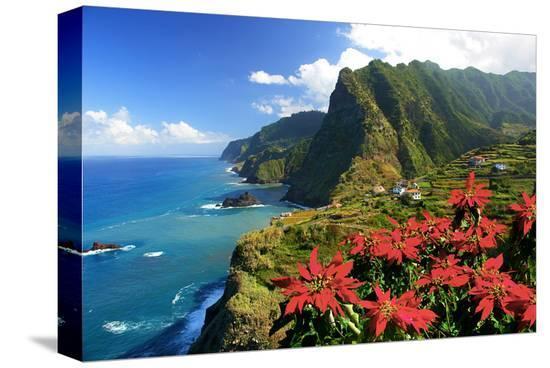 Coastal landscape near Boa Ventura, Madeira Island, Portugal, composing--Stretched Canvas Print