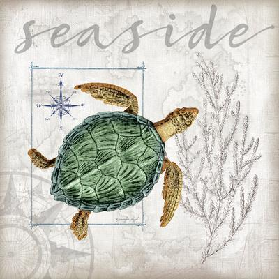 https://imgc.allpostersimages.com/img/posters/coastal-sea-turtle_u-L-Q10ZFCW0.jpg?artPerspective=n