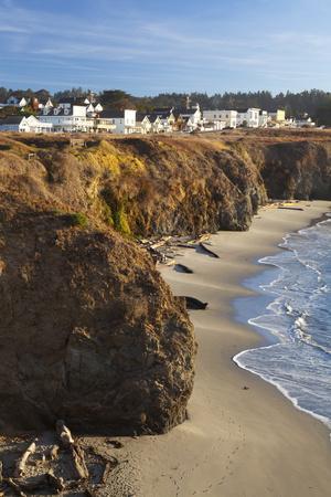 https://imgc.allpostersimages.com/img/posters/coastal-town-of-mendocino-california-united-states-of-america-north-america_u-L-PQ8NJB0.jpg?p=0